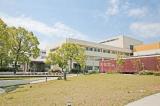 地方独立行政法人大阪府立病院機構 大阪母子医療センターのイメージ