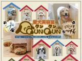株式会社 Nice QunQunのイメージ